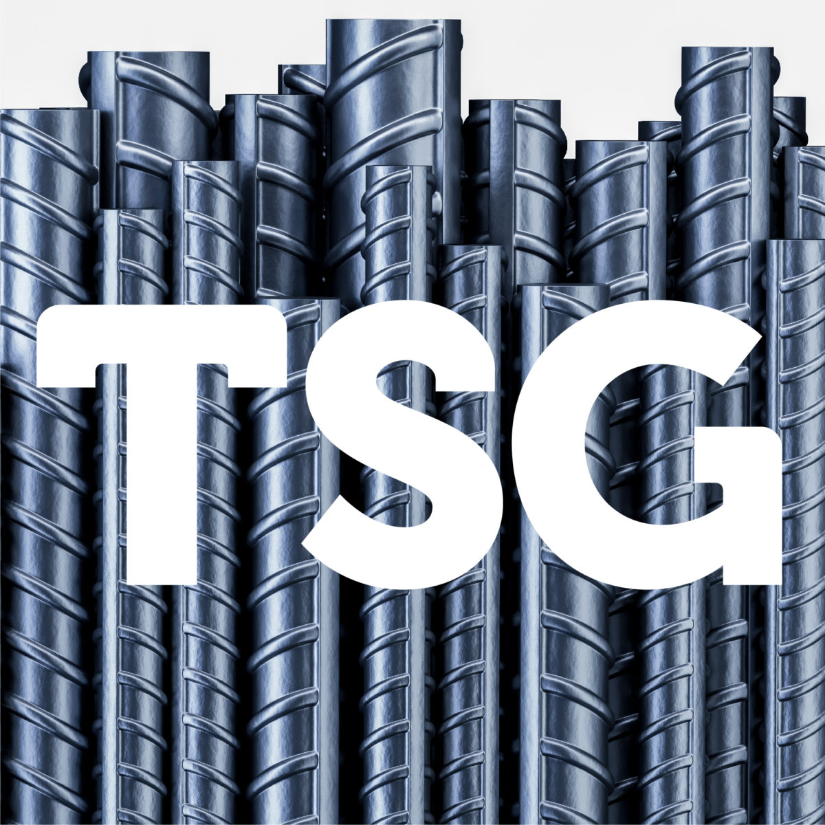 Digital Services for TSG